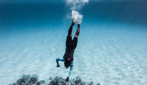 Deep Dive into Your Business