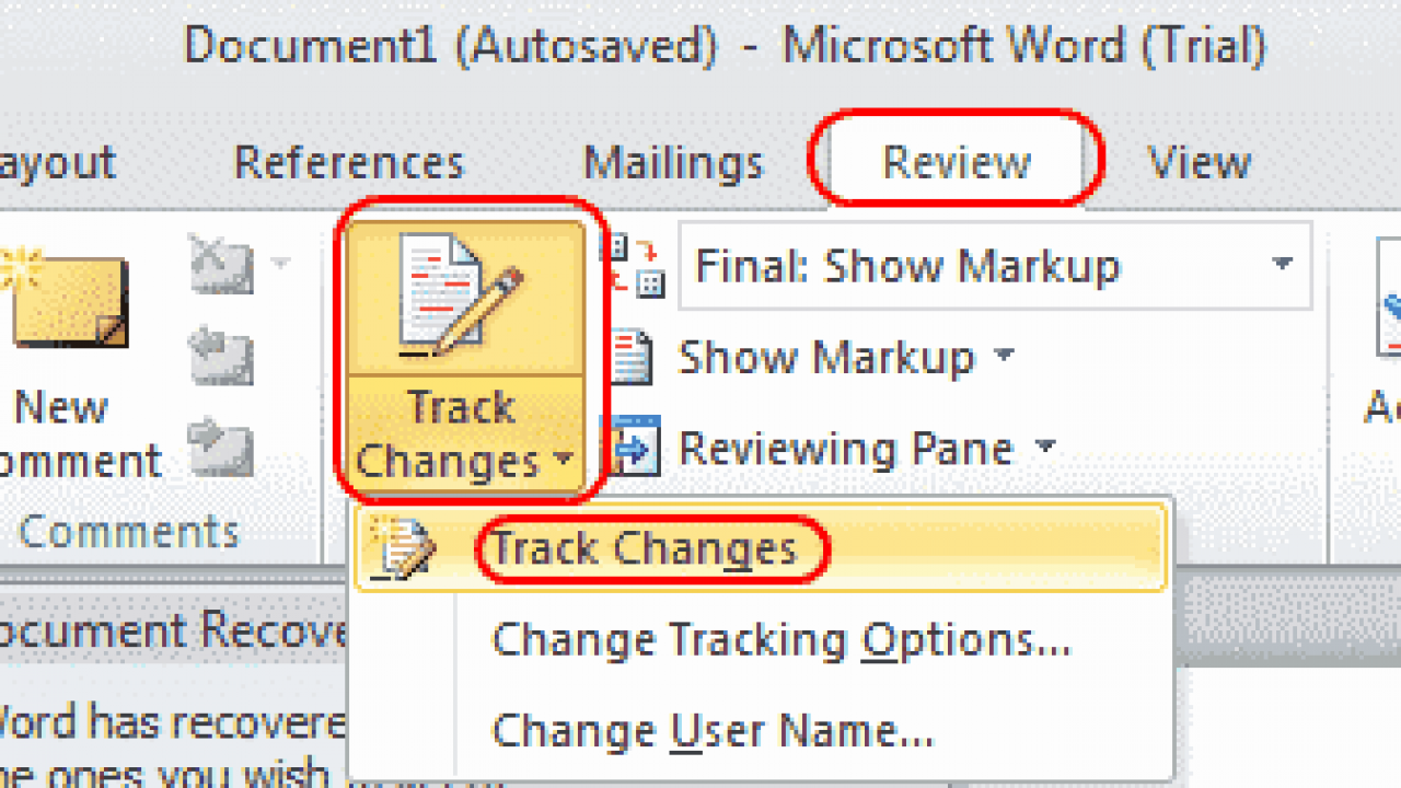 track changes in word